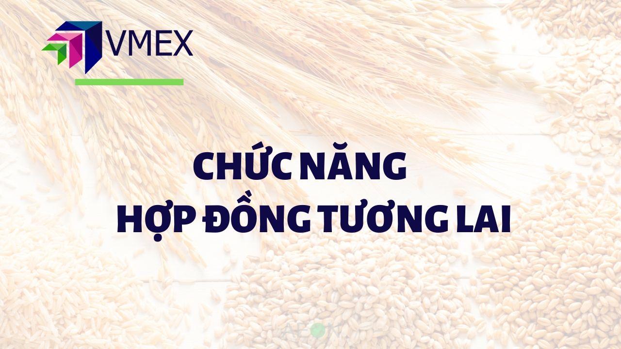 chuc nang hop dong tuong lai