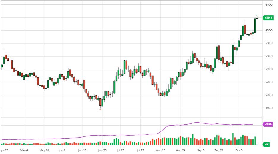 Biểu đồ lúa mỳ CBOT (daily chart)